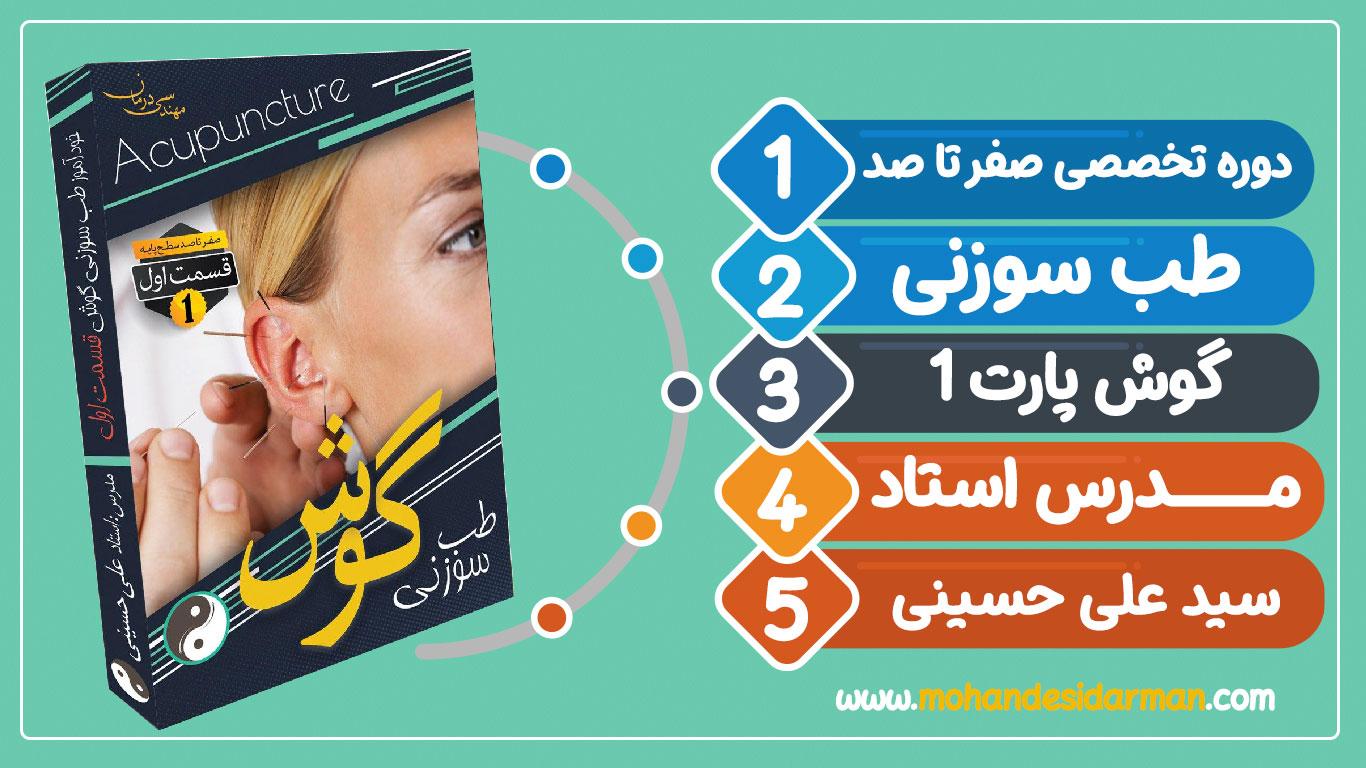 آموزش صفر تا صد طب سوزنی گوش قسمت اول-مدرس استاد علس حسینی
